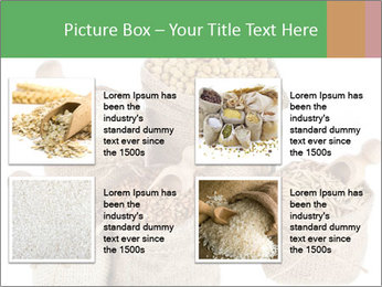 Corn kernel seed meal and grains in bags collection PowerPoint Template - Slide 14