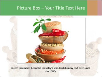 Corn kernel seed meal and grains in bags collection PowerPoint Template - Slide 16