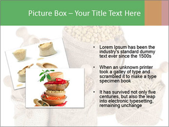 Corn kernel seed meal and grains in bags collection PowerPoint Template - Slide 20