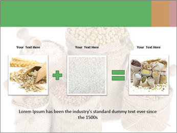 Corn kernel seed meal and grains in bags collection PowerPoint Template - Slide 22