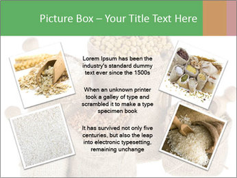 Corn kernel seed meal and grains in bags collection PowerPoint Template - Slide 24