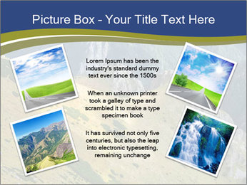Rock on Tatra Mountains PowerPoint Template - Slide 24