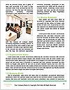0000088433 Word Template - Page 4