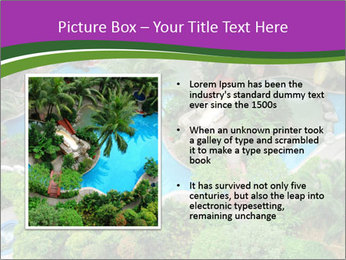 Palm and Swimming pool PowerPoint Template - Slide 13