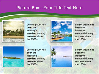 Palm and Swimming pool PowerPoint Templates - Slide 14