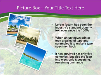 Palm and Swimming pool PowerPoint Template - Slide 17