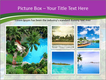 Palm and Swimming pool PowerPoint Template - Slide 19