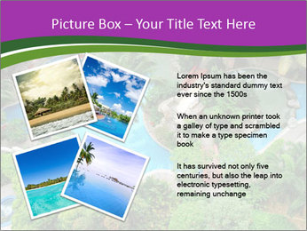 Palm and Swimming pool PowerPoint Templates - Slide 23