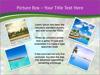 Palm and Swimming pool PowerPoint Templates - Slide 24