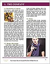 0000088444 Word Template - Page 3