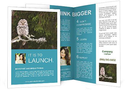 0000088451 Brochure Template