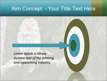 Ural Owl on tree PowerPoint Template - Slide 83
