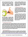 0000088454 Word Template - Page 4