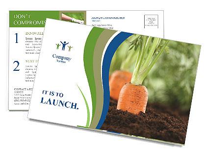 0000088459 Postcard Template