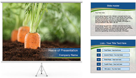 Healthy eating ripe carrots in vegetable PowerPoint Template