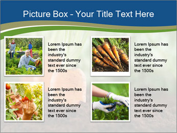 Healthy eating ripe carrots in vegetable PowerPoint Templates - Slide 14
