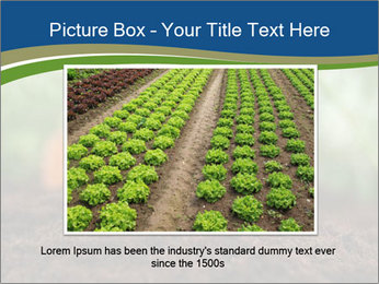 Healthy eating ripe carrots in vegetable PowerPoint Templates - Slide 16