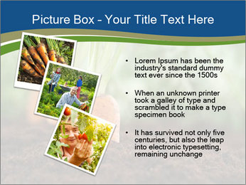 Healthy eating ripe carrots in vegetable PowerPoint Templates - Slide 17