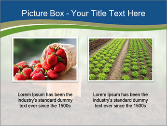 Healthy eating ripe carrots in vegetable PowerPoint Templates - Slide 18