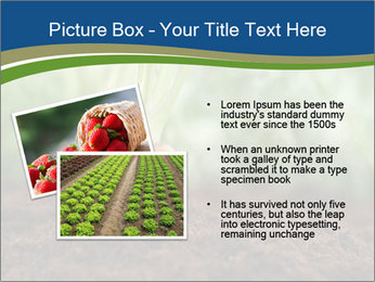 Healthy eating ripe carrots in vegetable PowerPoint Templates - Slide 20