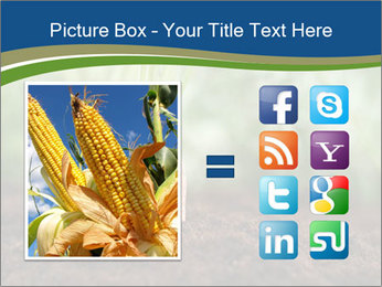 Healthy eating ripe carrots in vegetable PowerPoint Templates - Slide 21
