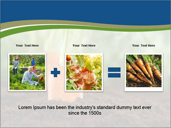 Healthy eating ripe carrots in vegetable PowerPoint Templates - Slide 22