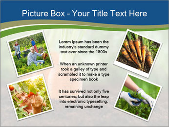 Healthy eating ripe carrots in vegetable PowerPoint Templates - Slide 24