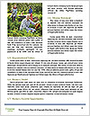 0000088459 Word Templates - Page 4