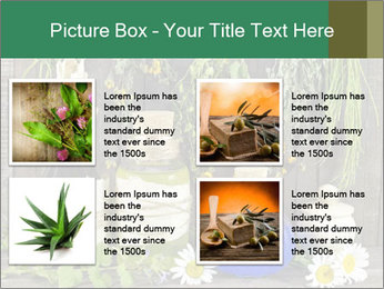 Still life with healing herbs PowerPoint Templates - Slide 14