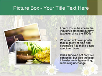 Still life with healing herbs PowerPoint Templates - Slide 20
