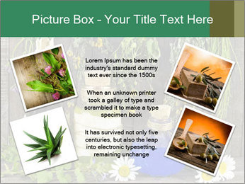 Still life with healing herbs PowerPoint Templates - Slide 24