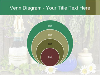 Still life with healing herbs PowerPoint Templates - Slide 34