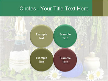 Still life with healing herbs PowerPoint Templates - Slide 38