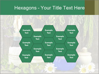 Still life with healing herbs PowerPoint Templates - Slide 44