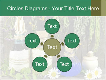 Still life with healing herbs PowerPoint Templates - Slide 78