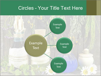Still life with healing herbs PowerPoint Templates - Slide 79