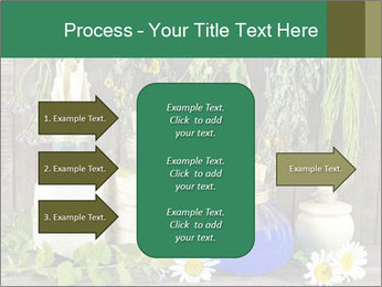 Still life with healing herbs PowerPoint Templates - Slide 85
