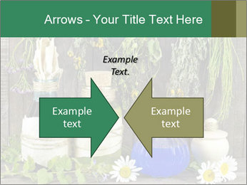 Still life with healing herbs PowerPoint Templates - Slide 90