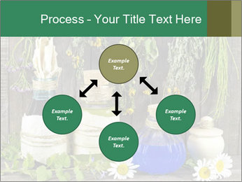 Still life with healing herbs PowerPoint Templates - Slide 91