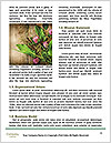 0000088466 Word Templates - Page 4