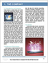 0000088467 Word Template - Page 3