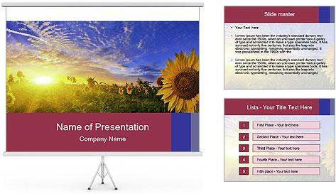 Sunflower field PowerPoint Template