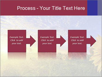 Sunflower field PowerPoint Templates - Slide 88