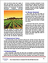 0000088472 Word Template - Page 4