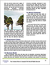 0000088481 Word Templates - Page 4