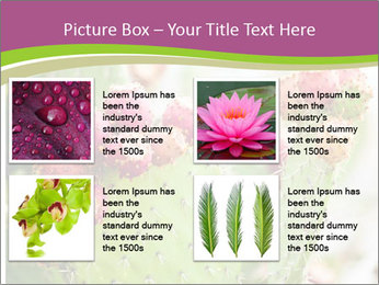 Cactus In Blossom PowerPoint Templates - Slide 14