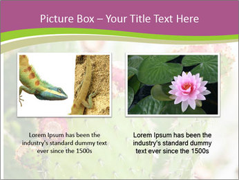 Cactus In Blossom PowerPoint Templates - Slide 18