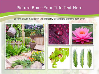Cactus In Blossom PowerPoint Templates - Slide 19