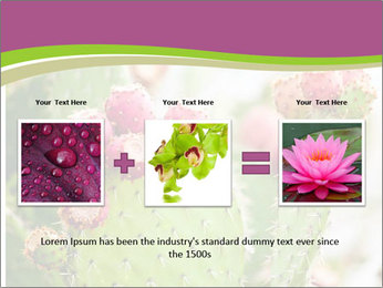 Cactus In Blossom PowerPoint Templates - Slide 22