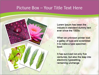 Cactus In Blossom PowerPoint Templates - Slide 23